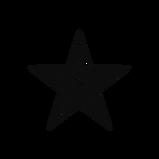 noun_movie star_516789 (1).png