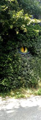 """Oeil de dragon (seul l'oeil est peint), """"Cabane café"""" Choranche (38) 2020"""
