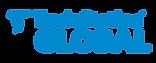 ts-global-logo-blu.png
