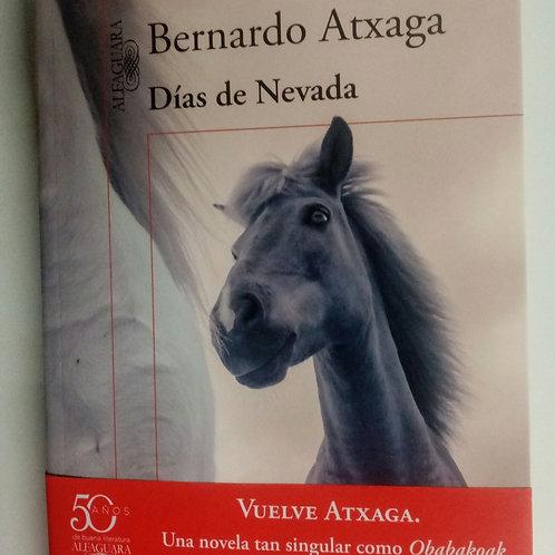 Días de Nevada (Bernardo Atxaga)