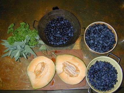ConcordGrapes-Melon-Sept-b.jpg