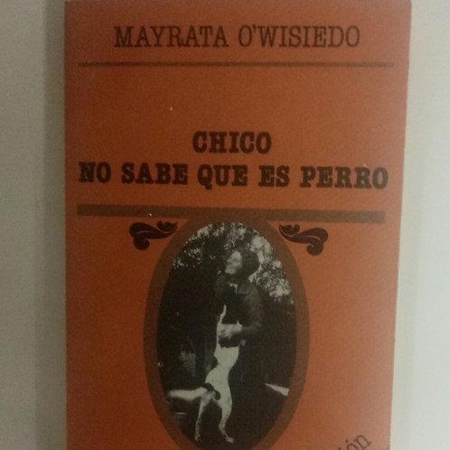 Chico no sabe que es perro (Mayrata O'Wisiedo)