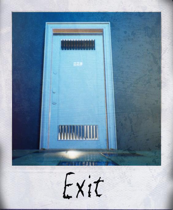 exit polaroid