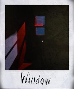 window polaroid