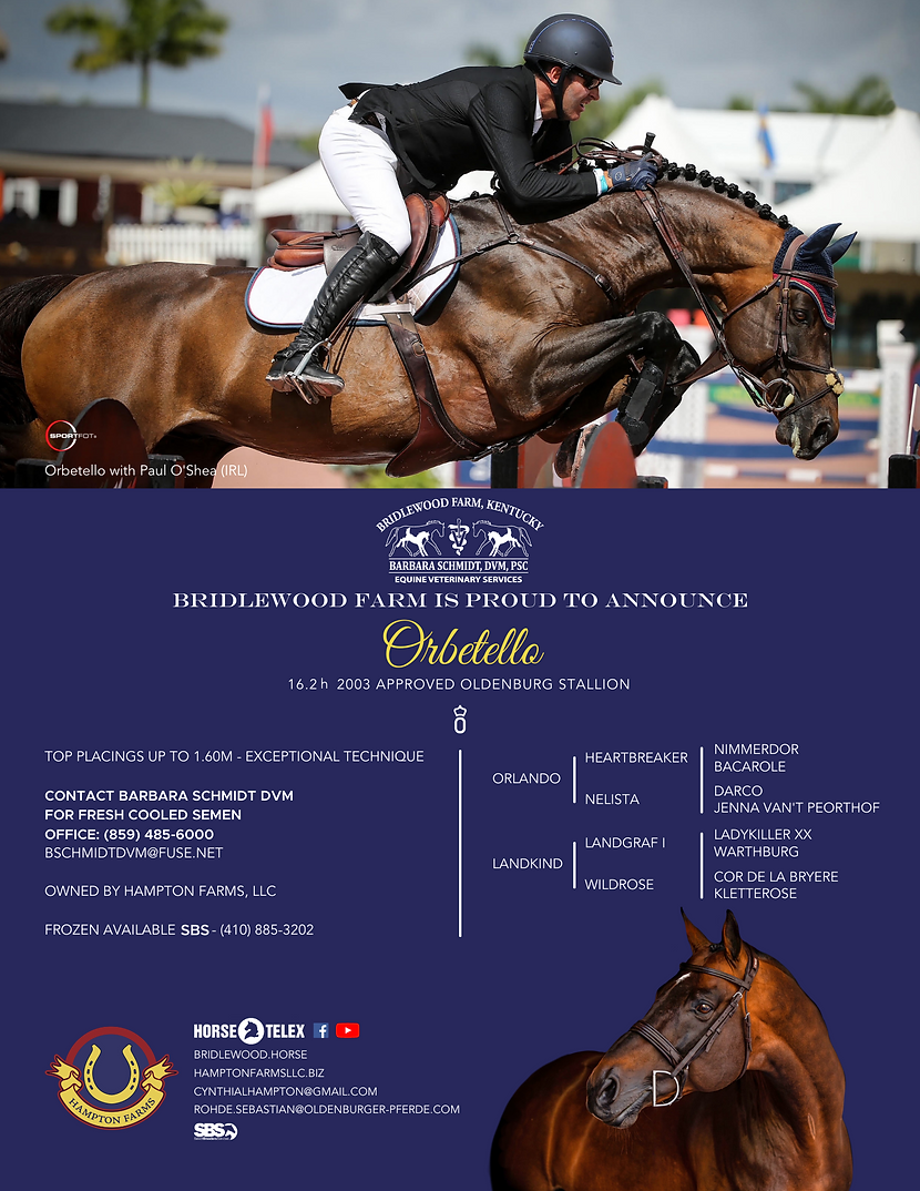 Orbetello Stud Ad - FINAL.png