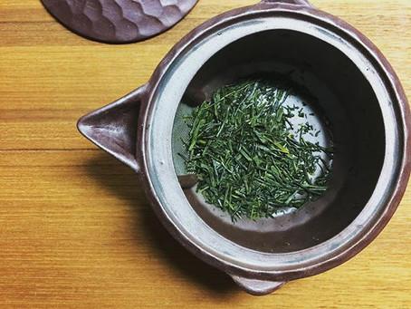 無農薬の、山のお茶(煎茶)です