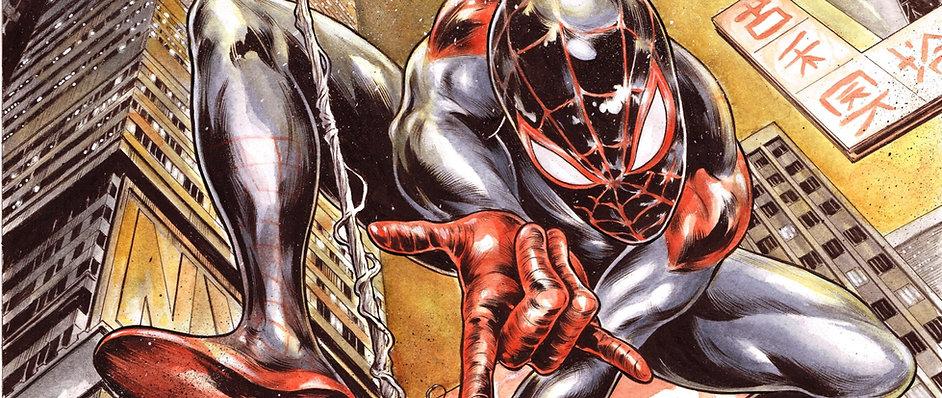 Spiderman%20Verse%20%26%20Spider%20Gwen%
