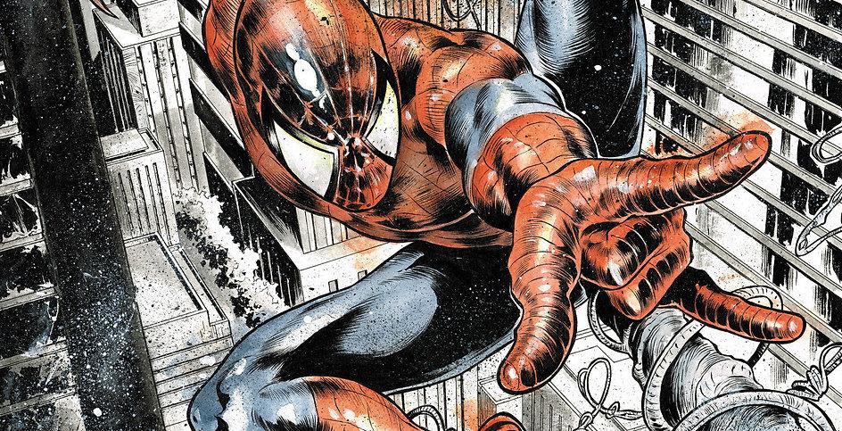 Spiderman Vs blackcat low res.jpg