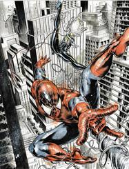 Spiderman Vs Blackcat
