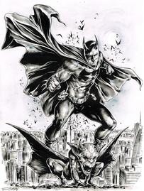 Batman on Gotham
