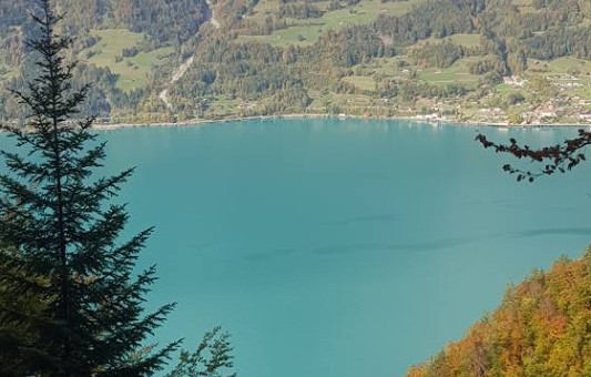 Turquoise Lake Brienz