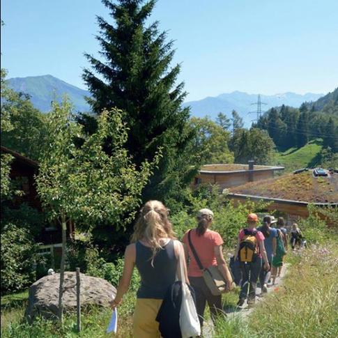 Mindful walk in Schweibenalp