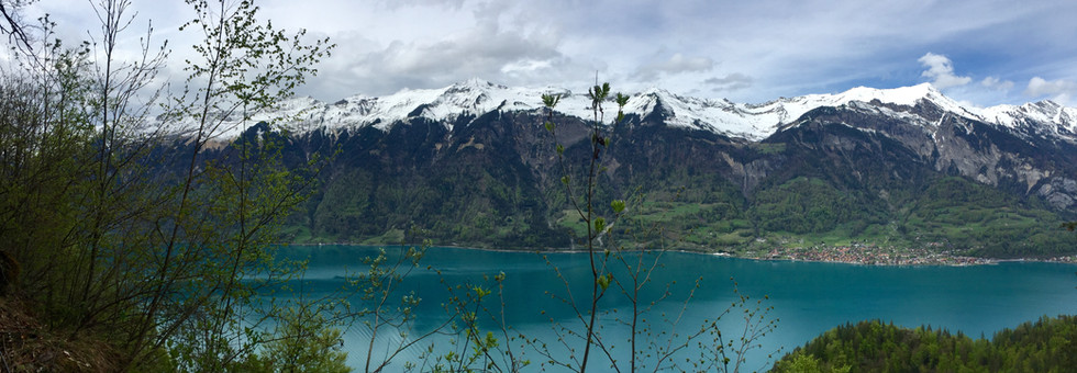 View of Lake from Schweibenalp