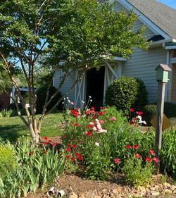 Barn garden in late spring