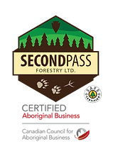 SeccondPass_full_logo.png