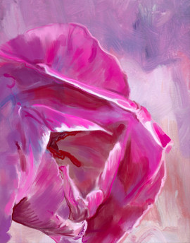Fuchia Tulip, Subtle