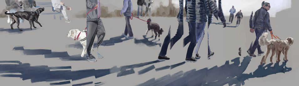 Dog's Day Out