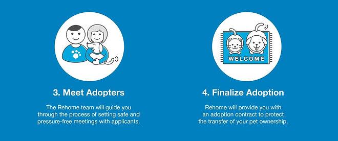 Rehome Steps 2.jpg