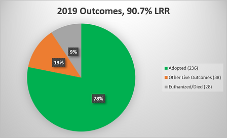 2019 Outcome Pie Chart.png