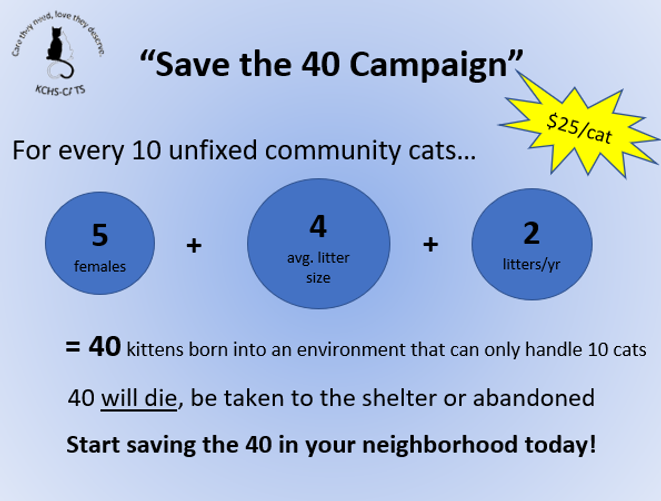 Save the 40 Poster 2.png