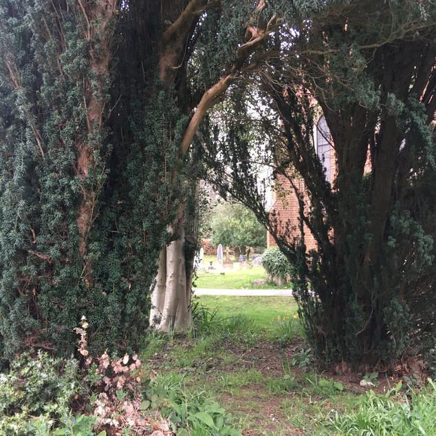 Churchyard-01.JPG