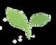 Scan leafy leaf highres.png