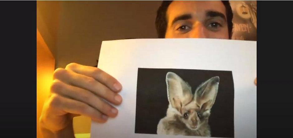 Naturalists Bat Episode.jpg