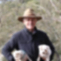 Prime Minister Malcolm Turnbull.jpg