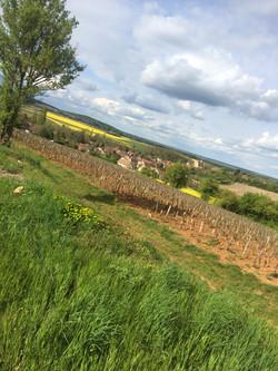 Mellecey vu des vignes