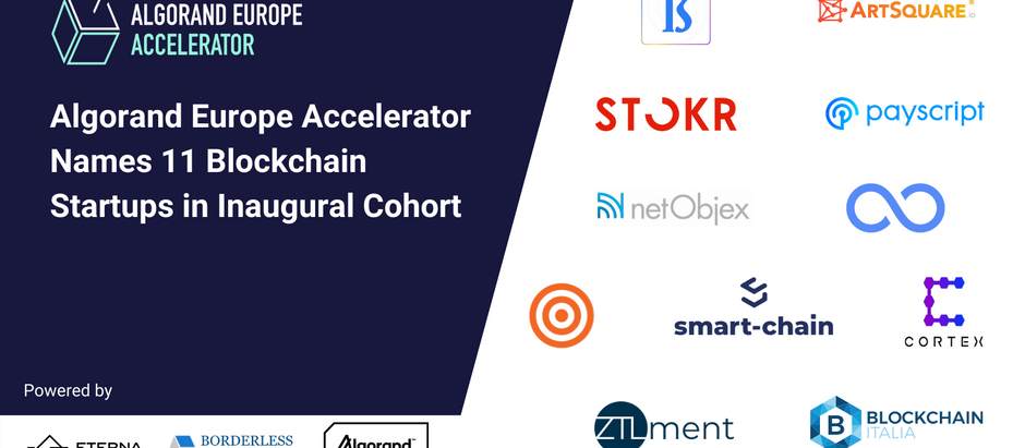 Algorand Europe Accelerator Names 11 Blockchain Startups in Inaugural Cohort