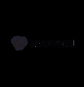 Vang Capital logo aea.png
