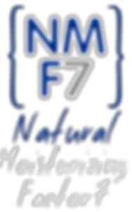 NMF7-202x300.png