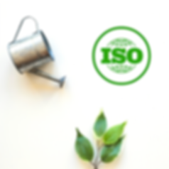 ISO GREENCENTRAL.png