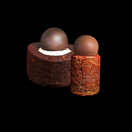 brownie vanilla chocolate hazelnut cake