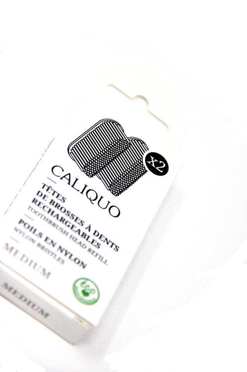 CALIQUO - 2 recharges pour brosse à dents