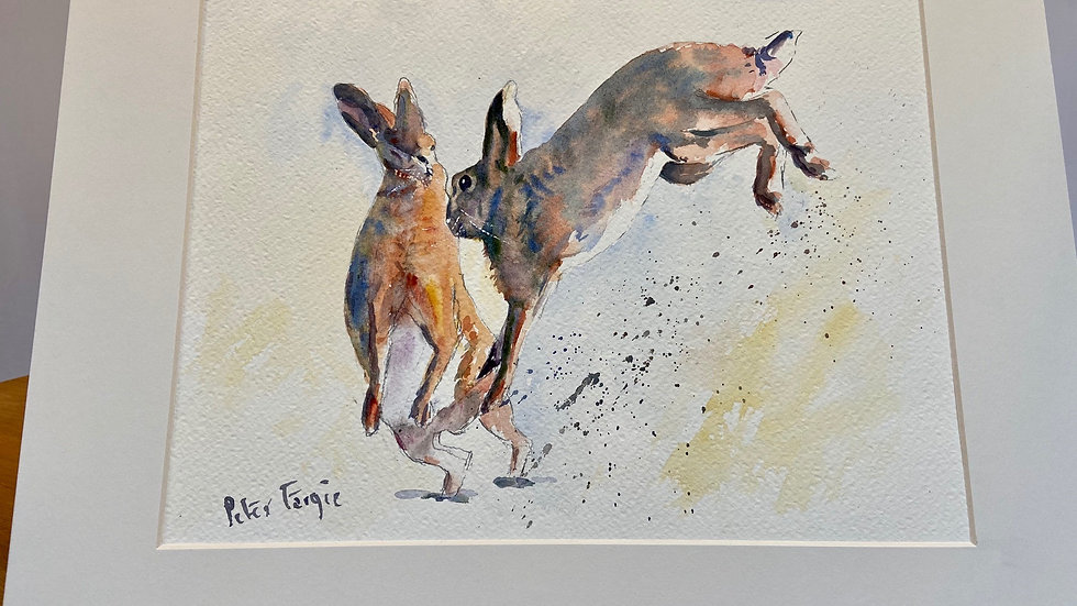 Boxing Hares Yellow Painting