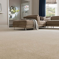 livingroom carpet 1.jpg