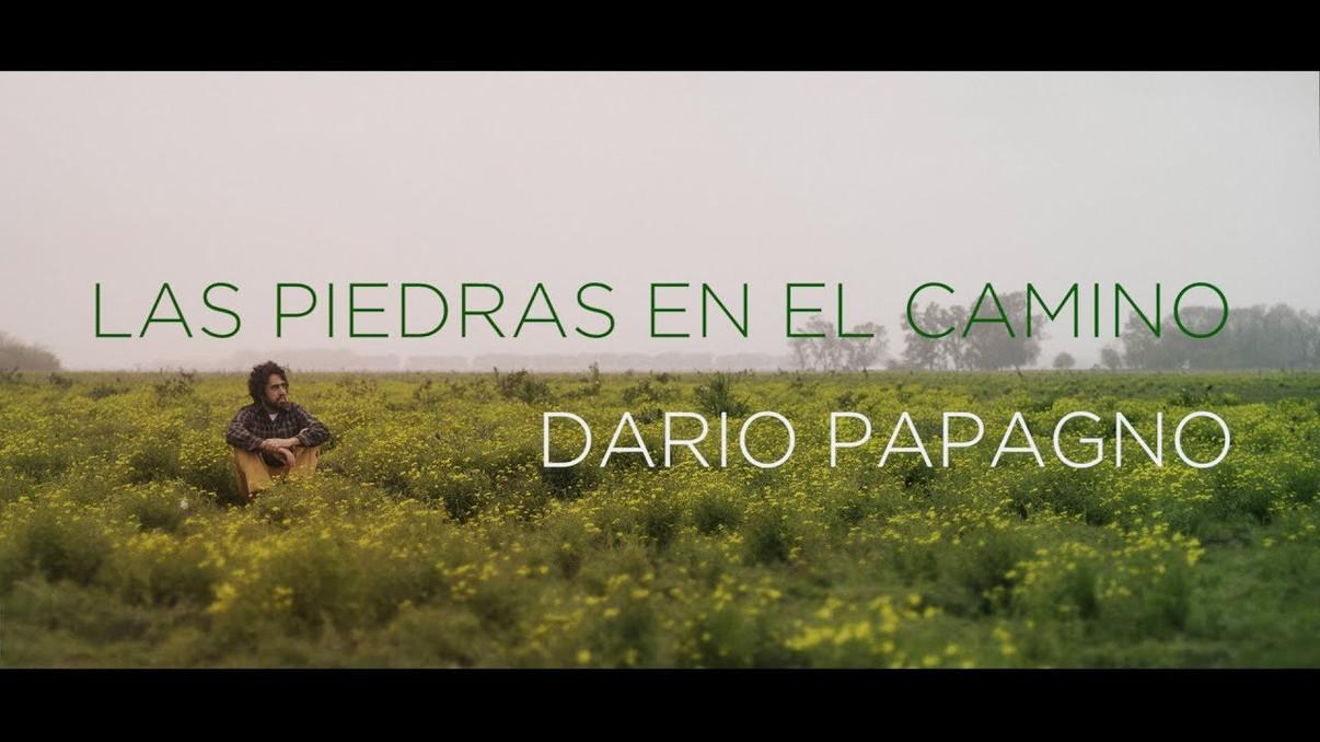 Dario Papagno - Las Piedras en el Camino