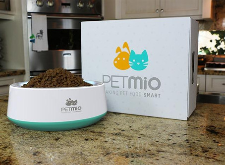 Our Origin Story: The Beginning Of PetMio