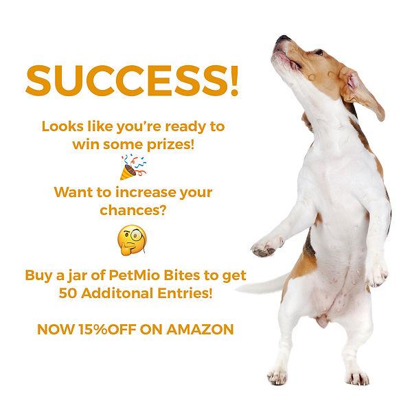 success_page_1.jpg