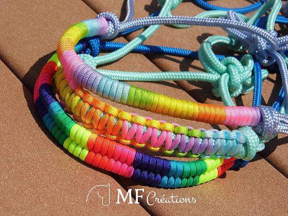 Licol rainbow