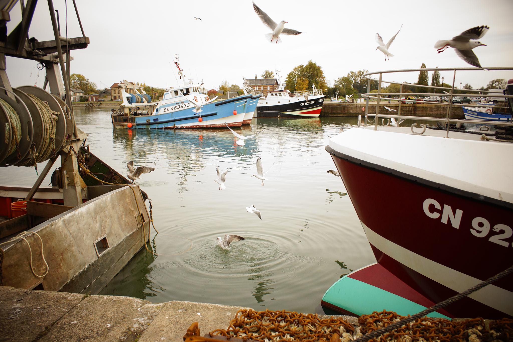 Photographie mer, Port, Bateau...