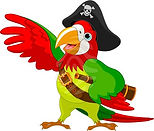 web_ship_bird.jpg