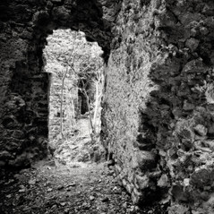 castle Reichenekk 6