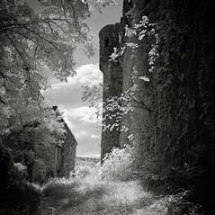 castle Rihemberk 2