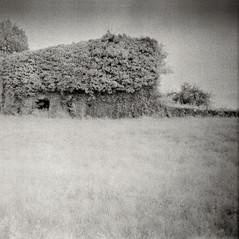 castle Krupp (the granary) 2