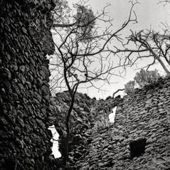 castle Reichenekk 3