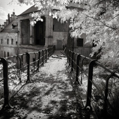 manor Wildhaus 2