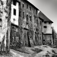 castle  Burg Ursperg 2