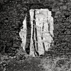 castle Steegberg 2